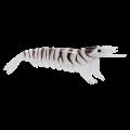 Nakazima Γαρίδες 9cm Καλαμαριέρες